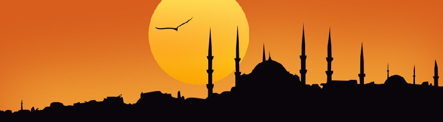 vip istanbul tours
